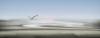 1st Place Digital - Dawn Flight - David Kershaw