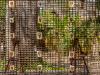 skulls_and_squares-83598aa90eedf4b85b601d5d8423d1c5394783ca