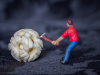 The Ivory Miner - Sally Sallett