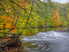 Commended autumn swirl By Adam Shute