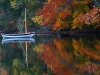 1 New England tranquility
