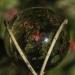 19-steve-womack-464-all-in-the-ball-606e44