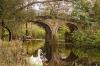 river-dearn-at-bretton-june-2014-8301ae78ea304b0c18f0e23e235ef7cc0d231a35
