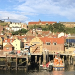 Whitby Panorama - Chris New