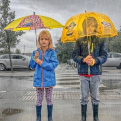 Commended - Yellow Brollies - Angela Crutchley-Rhodes
