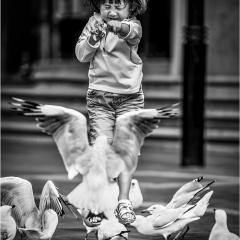 1st Print - Pecking Disorder by Nigel Hazell