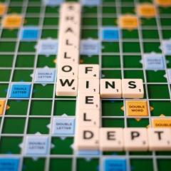 Shallow Depth Of Field Wins by Daniel Jeffrey