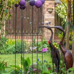 Mirror Images of my Garden by John Evans