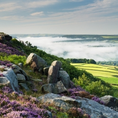 Heather & mist, Baslow Edge - Peak District