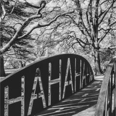 Haha-Bridge-YSP