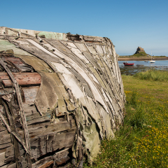 1st Place - Tatty-Old-Roof-by-Sara-Cremer