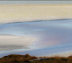 Estuary_Colours