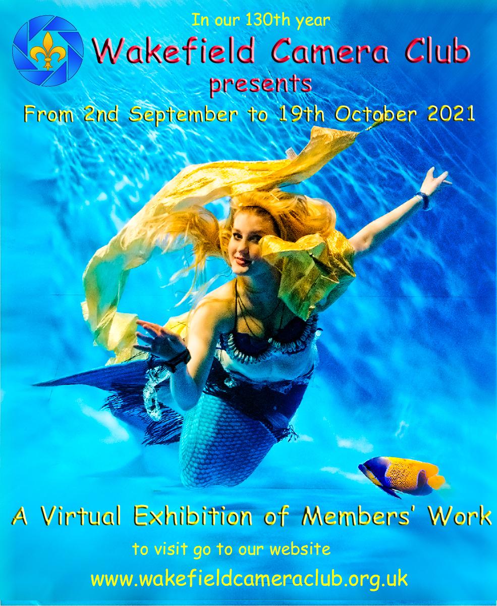 2021 Virtual Exhibition